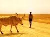 namibia-photo-1